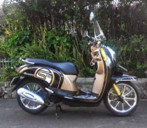scoopy modif simple