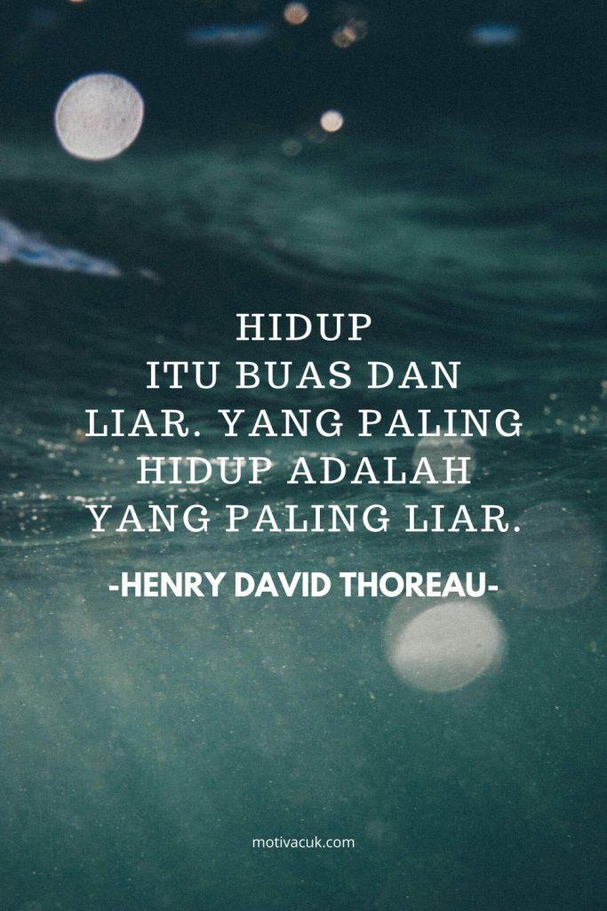 quotes jendela kehidupan