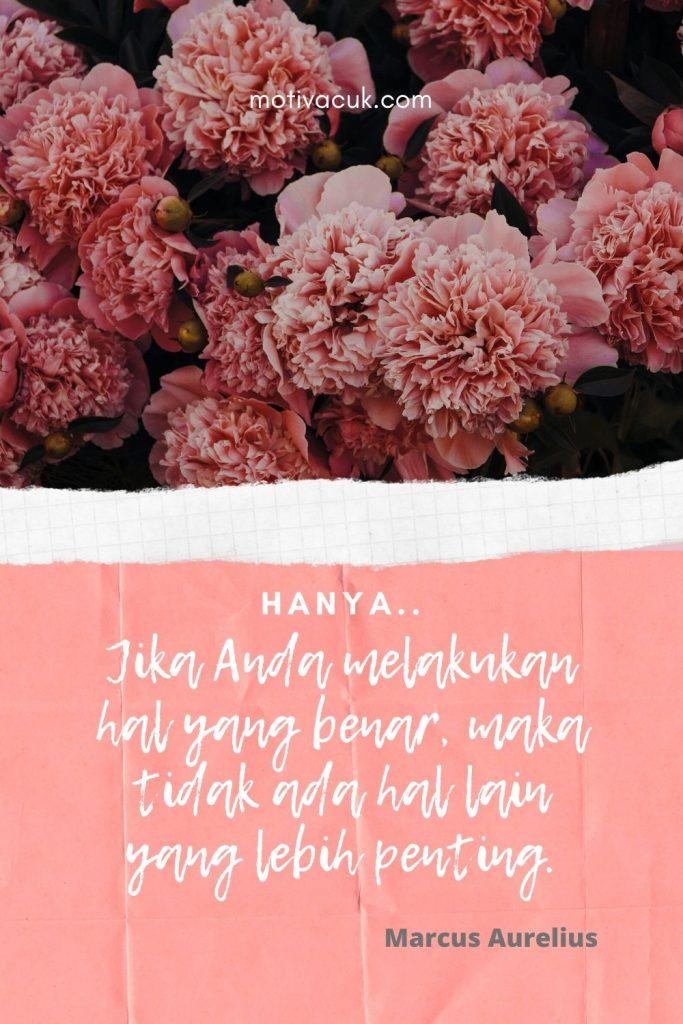 quote kehidupan singkat